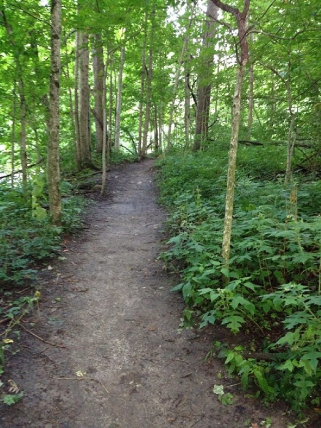 walking-path-2.jpg